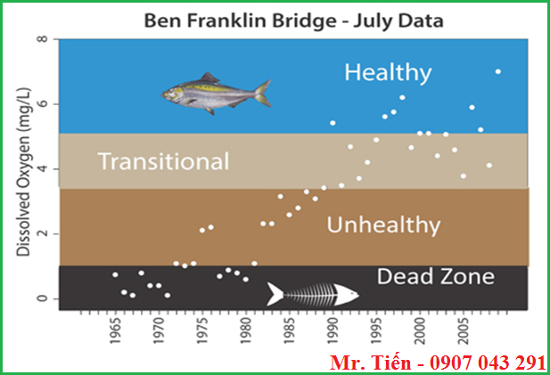 Ảnh hưởng của Oxy hòa tan trong nước (DO) đến cá
